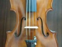 viola2015-1
