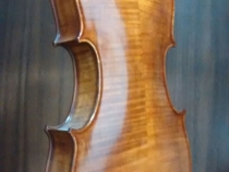 viola2015-2