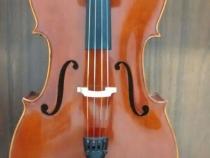 cello-05042016