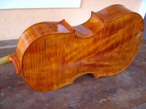 cello-r.silva-018
