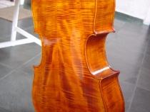 cello-r.silva-031