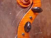 cello-r.silva-007