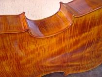 cello-r.silva-020